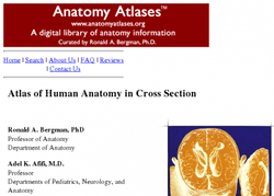 Atlas of human anatomy in cross section 30306 2